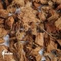Cocos bark (flora bark) course (0,5 kg)