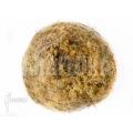 Moss ball spaghnum