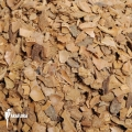 Nut husk (5 litre) (potting media)