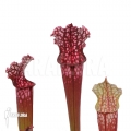 Trumpet pitcherplant ´Sarracenia x farnhamii (L)'