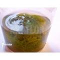 Bladderwort 'Utricularia minor'