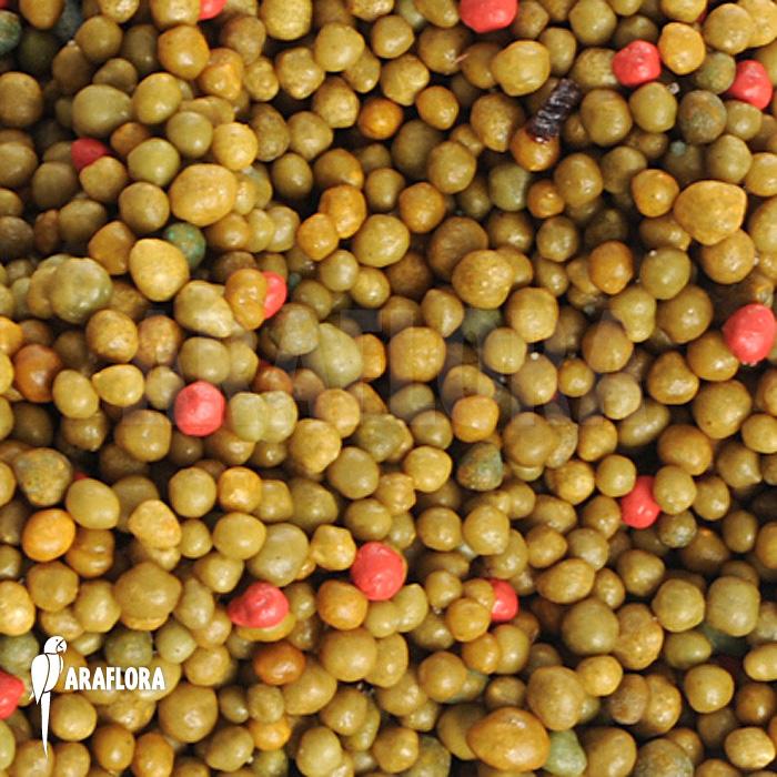 Las vitaminas en las plantas tips - Vitaminas para plantas de interior ...